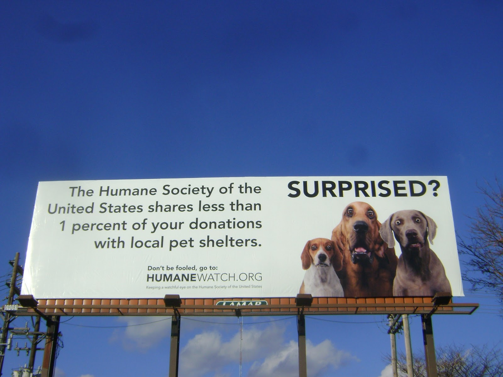 Governor stands firm in opposition to HSUS