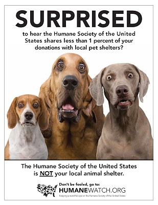 The Humane Society of the United States is not about helping local pet shelters