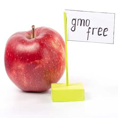 GMO regulation
